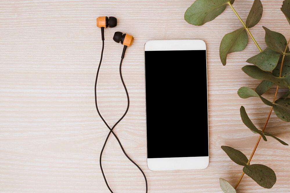 Top 5 des meilleurs thèmes WordPress pour Podcast ou Radio en ligne